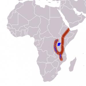 Great_Rift_Valley-300x300 Afrikanischer Grabenbruch (Lage & Entwicklung)